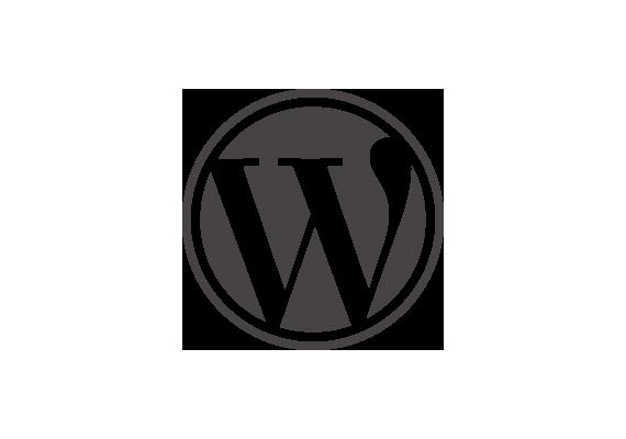 Wordpress, größtest und vielfältigstes CMS, das von Webagenturen empfohlen wird